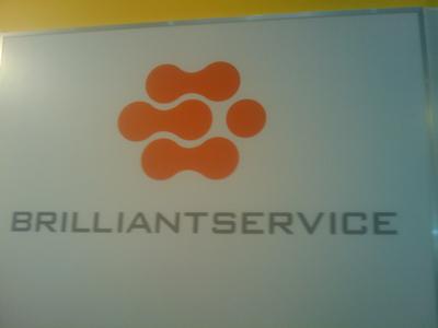 brillliant1.jpg
